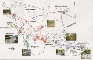 Cam1_map