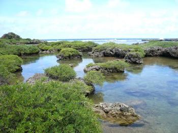 Guam1